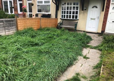 carpet cleared from garden birmingham after